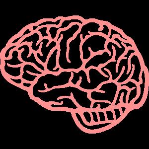 medicine motifs: the brain