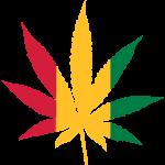 Cannabis Rasta