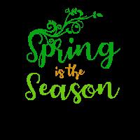 Spring is the season - Frühling ist die Jahreszeit