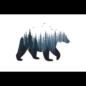 Bär - Wald