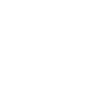 DUMB BUT UGLY