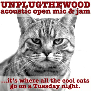 UnplugTheWood Cat