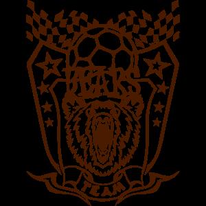 Bären Handball Wimpel sport team logo
