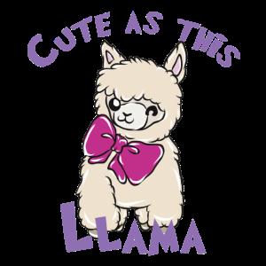 Süßes Lama