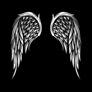 Wings: Angel