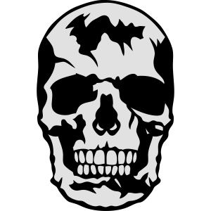 Schädel Skelett Kopf 2901