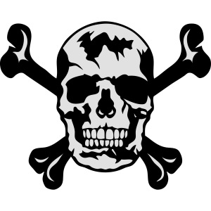 tete de mort os squelette 2901