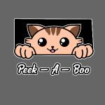Peek-A-Boo Katze