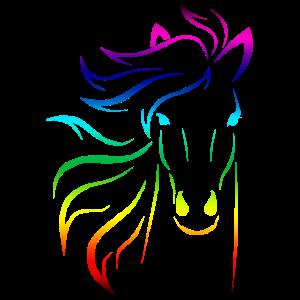 Bunter Pferdekopf mit Mähne