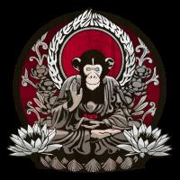 Zen Sapience