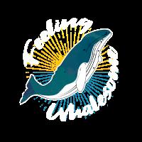 Wal Tierschutz Finnwal Geschenk