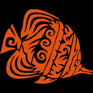 exotische Stammesfische 11 5