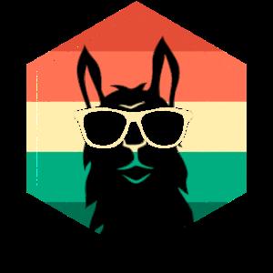 Retro Vintage Alpaka Lama mit Sonnenbrille Grunge