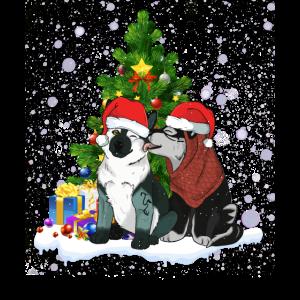 Siberian Husky Dog Santa Near By Christmas Tree