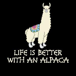 Lama Süßes Leben Ist Besser Mit Alpaka Geschenk