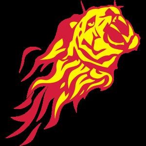 Tiger Tier Feuer Flamme 302