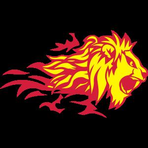 Löwe Tier Feuer Flamme 3020