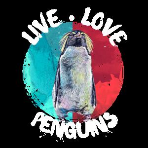 Pinguin Antartkis Eis Suedpol Geschenk