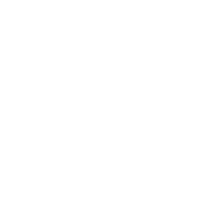 Just an alpaca Tee