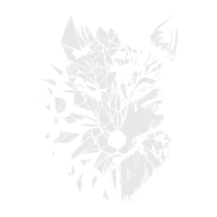 Fox Polygon 01
