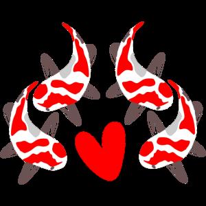 Koi Karpfen Fische Illustration FISCHE ZUECHTUNG