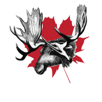 Canada Elch