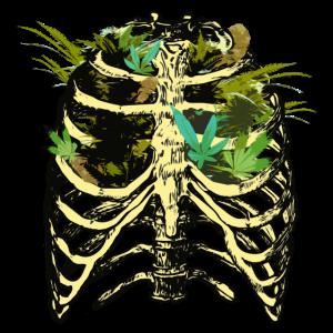 Cannabis THC CBD in der Lunge