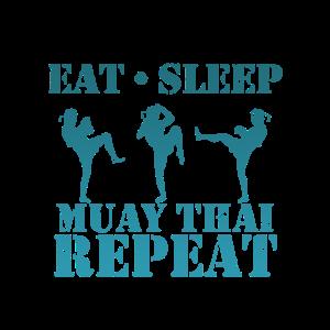 Muay Thai Boxen Kaempfer