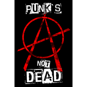Punk's Not Dead - Anarchy