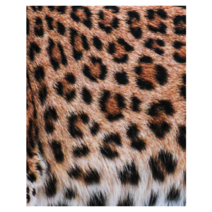 Leopard Fell