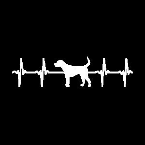 Hund Frequenz