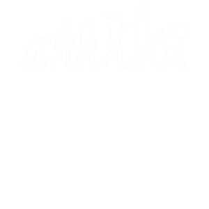 Grillen Barbeque Evolution - Geschenk