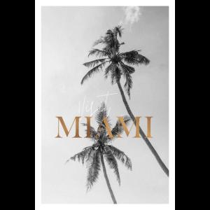 Miami besuchen Palme Meer Geschenk Urlaub USA