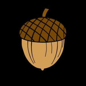 Bunte Eichel (Tassen, Hüllen, Taschen, etc.)