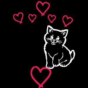 Kaetzchen Katzenliebe