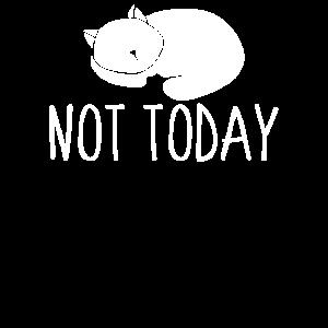 Not today - Katze, Kater, Haustier, Geschenk