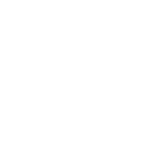Lustige Sprüche E-Auto Elektro Klima