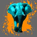 Elefant in Türkis