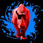 Rotes Nashorn