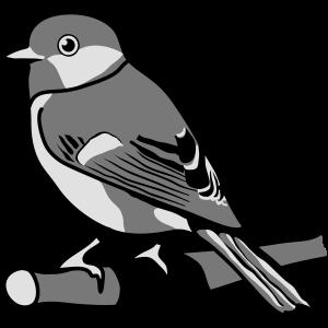 Spatz Vogel Tier Natur Design