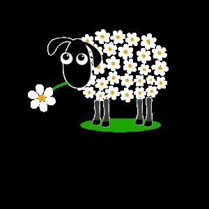 Schaf mit Blumen statt Wolle - Geschenk