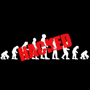 Evolution hacked