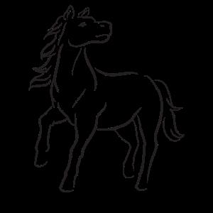 Pferd Umriss Pony Reitsport Pferde Reiter Geschenk