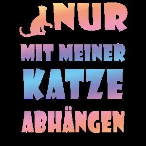 Kitty abhaengen Katze Mieze