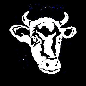 Kuh Kuhkopf Landwirt Kühe Rind Landwirtschaft