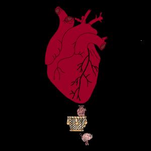 Herz fliegt mit Gehirn Medizin