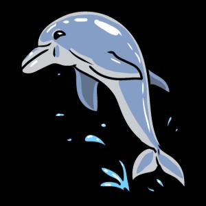 Dolphin Fisch Fische Meerestiere