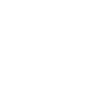 Future Internet Billionaire