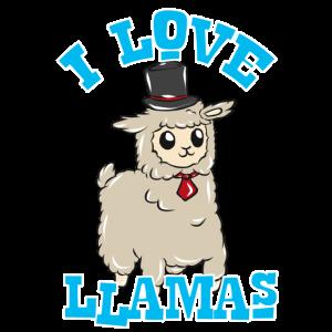 Cooles Lama