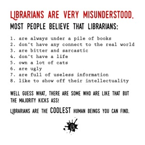 0338 Librarians are very misunderstood
